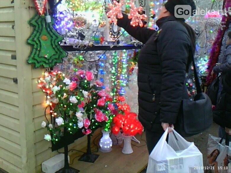 На александровском рынке началась распродажа живых ёлок и ёлочных украшений, фото-6
