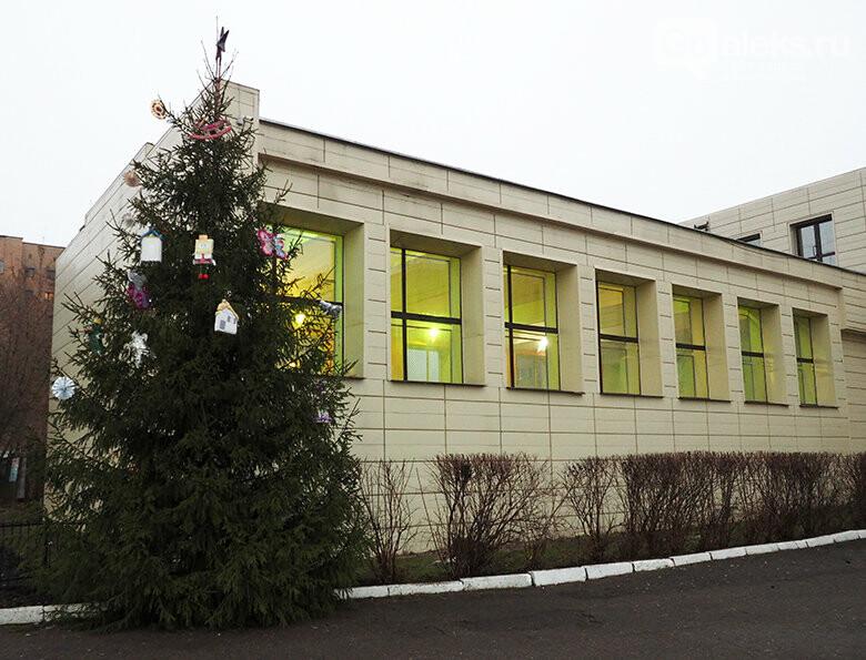 Александровские ёлки, фото-3