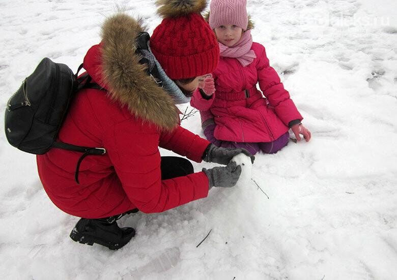 В александровском парке появились снеговики, фото-1