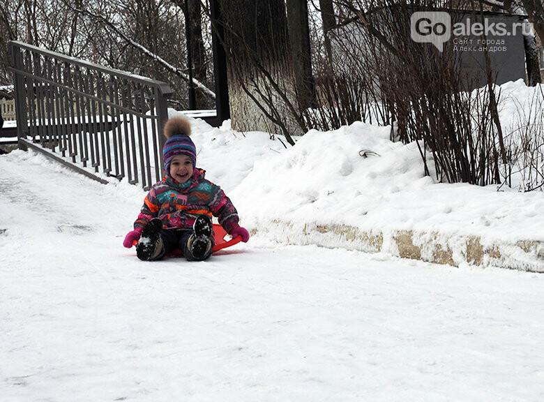 Зимние забавы в александровском парке, фото-1
