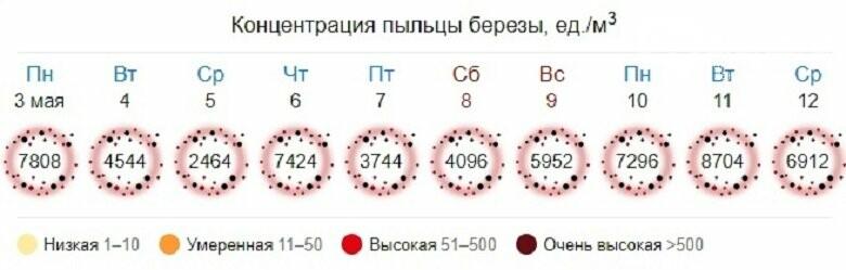 «Мокрые» майские праздники: прогноз погоды в Александрове, фото-1