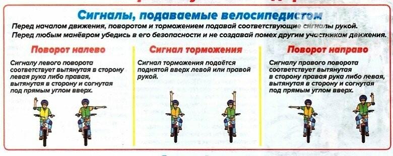 ПДД для александровских владельцев самокатов и велосипедов, фото-1